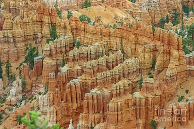 Bryce National Park, Utah Poster by Patricia Hofmeester