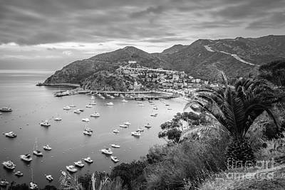 Catalina Island Avalon Bay Black And White Picture Poster