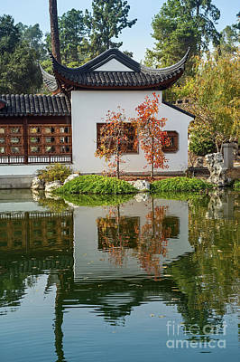 Chinese Garden At The Huntington Library. Poster by Jamie Pham