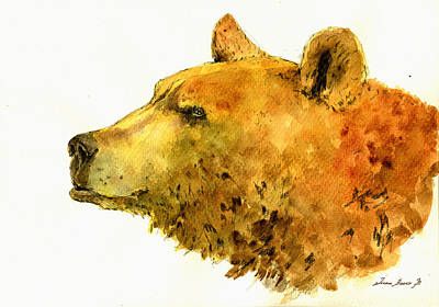 Grizzly Bear Watercolor Painting Poster by Juan  Bosco