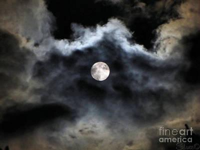 Lisas Wildlife Moons 2 Poster
