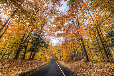 Pierce Stocking Drive In Fall Poster by Twenty Two North Photography