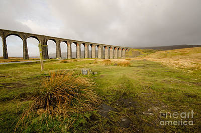 Ribblehead Viaduct Poster by Nichola Denny