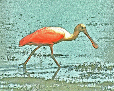 Poster featuring the digital art 4- Roseate Spoonbill by Joseph Keane