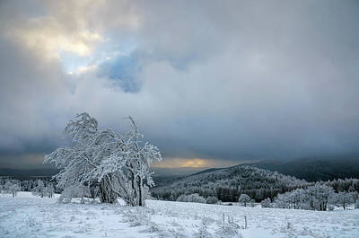 Typical Snowy Landscape In Ore Mountains, Czech Republic. Poster