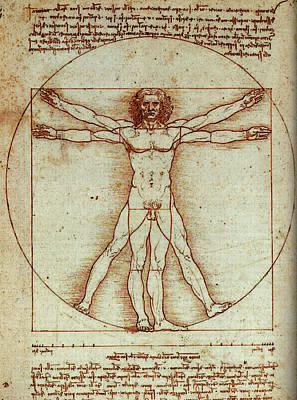 Vitruvian Man Poster by Leonardo In Digital