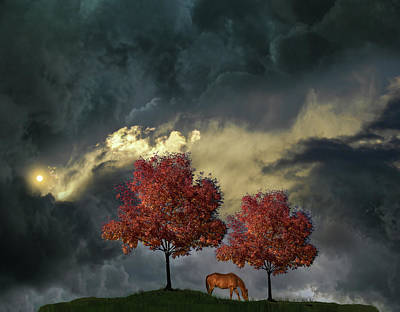 Poster featuring the photograph 4384 by Peter Holme III