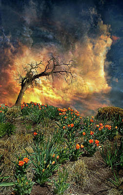 Poster featuring the photograph 4509 by Peter Holme III
