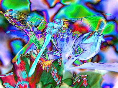 Abstract Dragonfly Poster by Belinda Cox