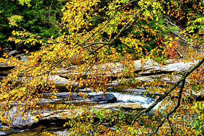 Autumn Middle Fork River Poster
