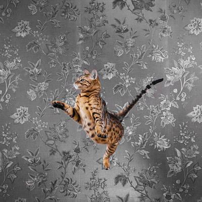 Bengal Cat Jumping Poster