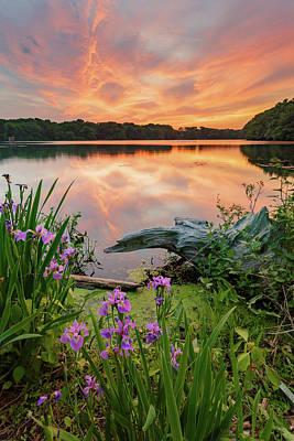 Central Pond Sunset Poster