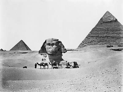 Egypt: Great Sphinx Poster