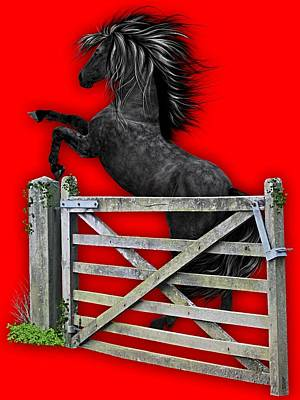 Horse Dreams Collection Poster