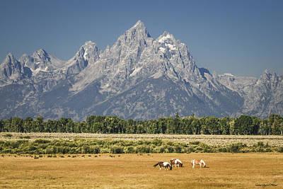 #5687 - Wyoming Poster