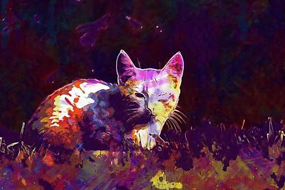 Poster featuring the digital art Cat Eye Injury One Eye Village  by PixBreak Art
