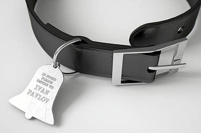 Leather Collar With Tag Poster by Allan Swart
