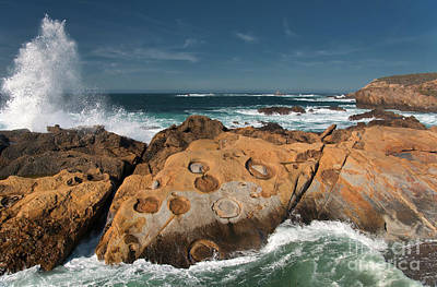 Point Lobos Concretions Poster by Glenn Franco Simmons