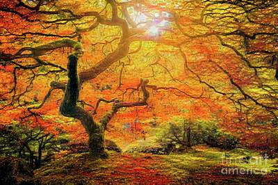 7 Abstract Japanese Maple Tree Poster