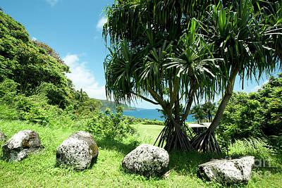 Keanae Maui Hawaii Poster