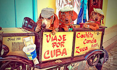 Havana, Cuba Poster by Chris Andruskiewicz