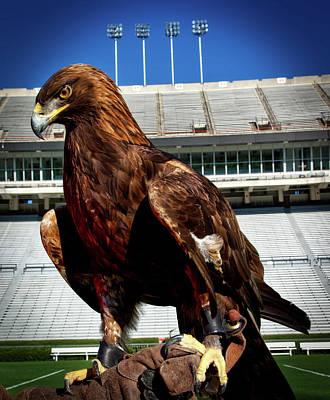 Auburn War Eagle Poster