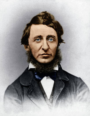 Poster featuring the photograph Henry David Thoreau by Granger