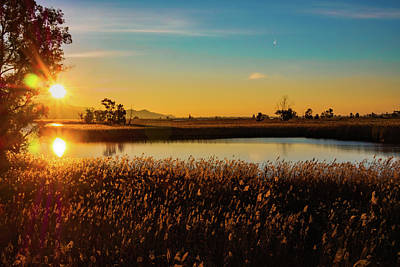 Sunrise In The Ditch Burlamacca Poster