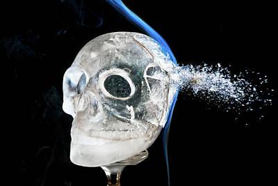 Ice Skullpture Poster