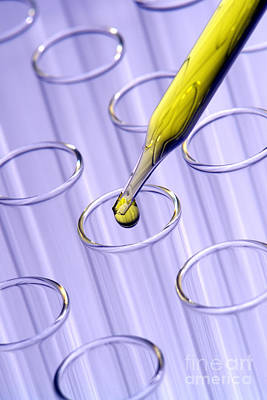 Laboratory Test Tubes In Science Research Lab Poster