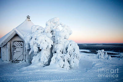 Winter In Lapland Finland Poster by Kati Molin