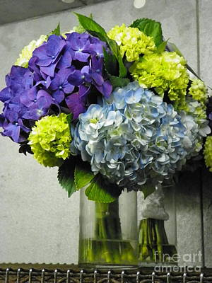 #935 D1002 Fascinating Bouquet Of Hydrangea Blooms Poster by Robin Lee Mccarthy Photography