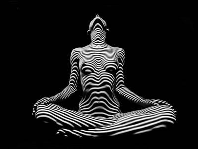 9934-dja Lotus Position In Zebra Stripes  Poster