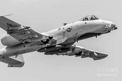 A-10 Thunderbolt II Bw Poster by Rene Triay Photography