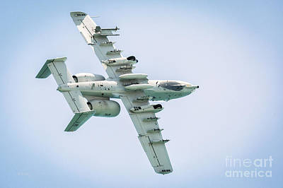 A-10 Thunderbolt II In A Roll Poster by Rene Triay Photography