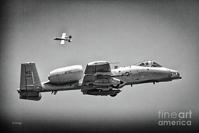A-10 Thunderbolt II Maneuvers Bw Poster by Rene Triay Photography