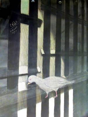 A Bird Man's Dream Poster