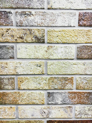 A Brick Wall Poster by Tom Gowanlock