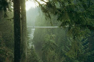 A Bridge Spans A Salmon Spawning River Poster