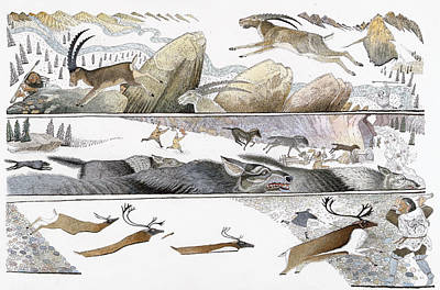 A Chart Illustrates Early Hunting Poster