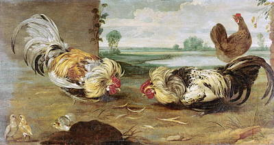 A Cock Fight Poster by Frans Snyders