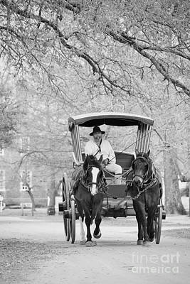 A Colonial Carriage In Black And White Poster by Rachel Morrison
