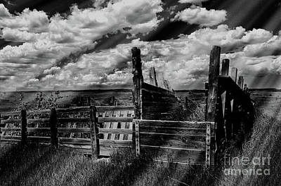 A Colorado Landscape In Black And White  Poster by Liane Wright