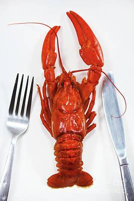 A Crawfish Poster by Masako Metz