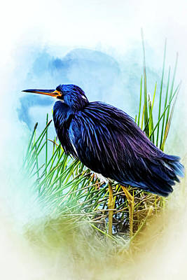 A Day In The Marsh Poster by Cyndy Doty