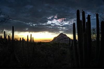 A Desert Sunset  Poster