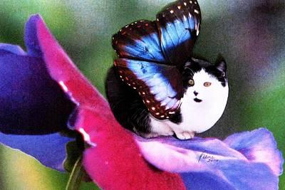 A Feline Fairy In My Garden Poster by Angela Davies