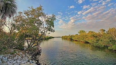A Florida Mangrove Estuary Poster by HH Photography of Florida