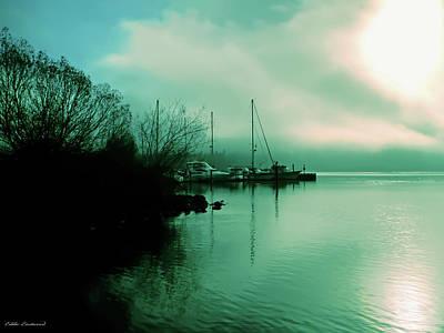 A Foggy Day At Log Boom Park On Lake Washington Poster