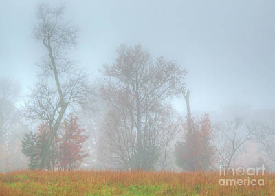 Poster featuring the photograph A Foggy Morning by Wanda Krack